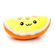 펫모닝 오렌지
