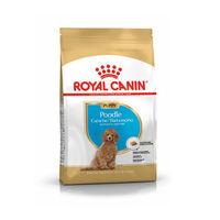 로얄캐닌 강아지 푸들 퍼피 1.5kg